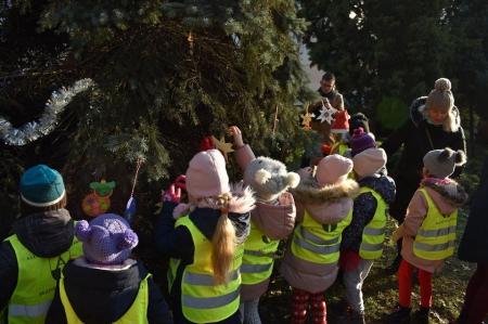 Coroczny zwyczaj ubierania świątecznego drzewka przed Urzędem Miasta.